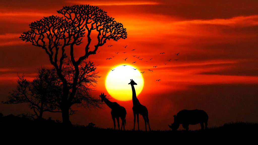 africa free img
