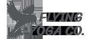 flying-yoga